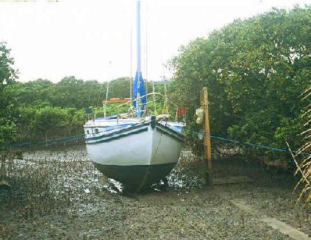 Exploring Bilge Keels, And Have Questions: